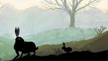 Le chemin d'un lièvre